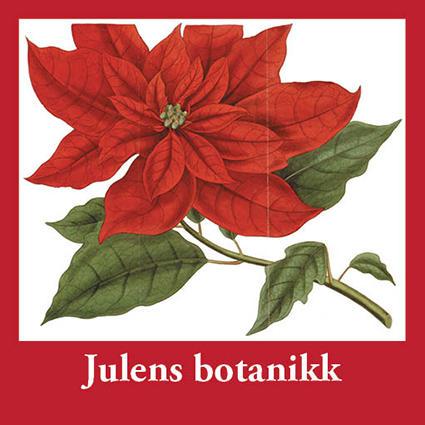Julens botanikk vises fram i Blondehuset.