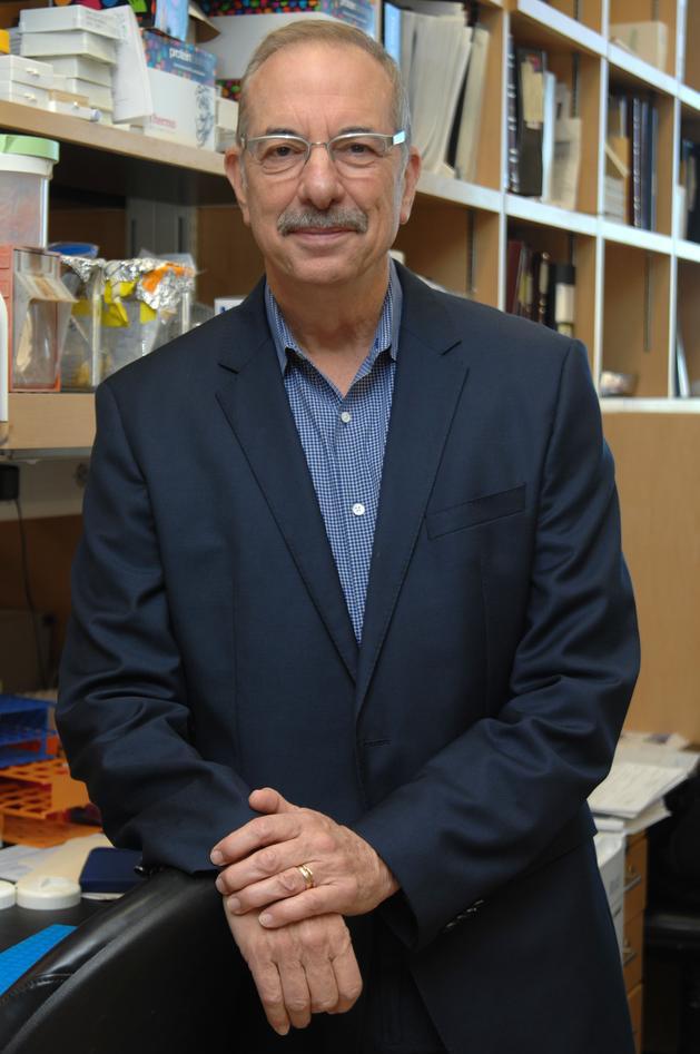 Portrait photo of Bruce Zetter