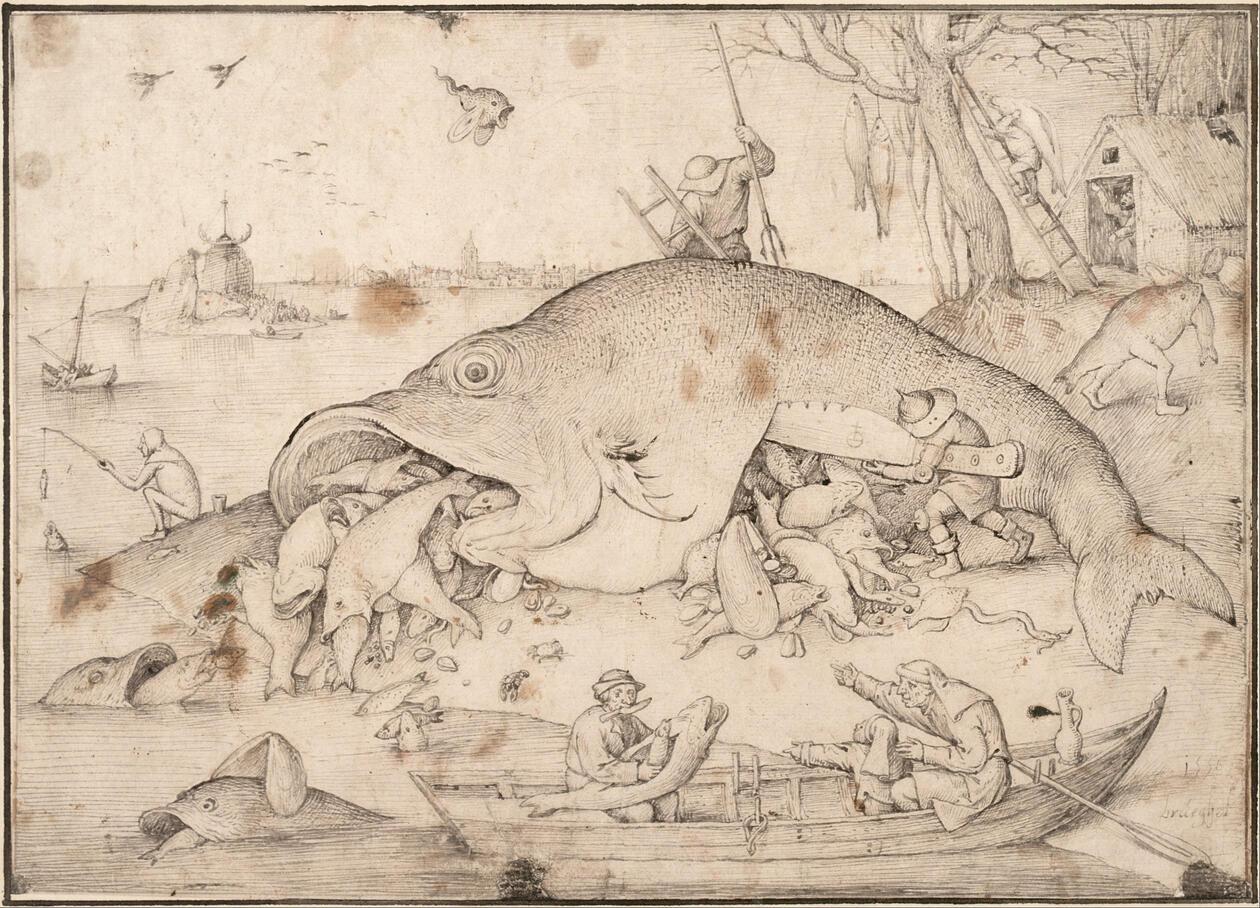 Stor fisk som spiser mindre fisk