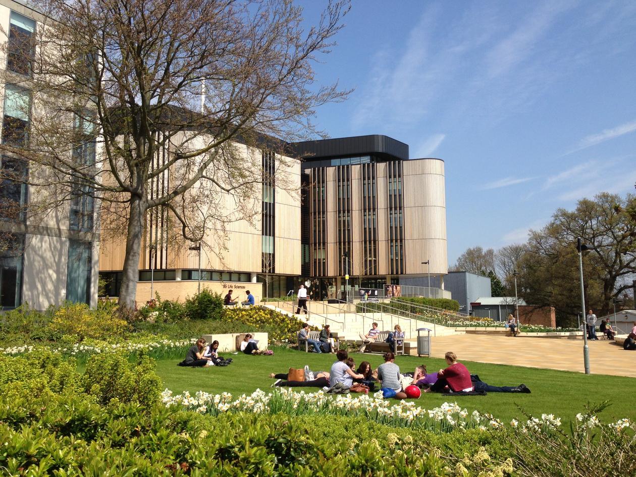 Universitetsbygg