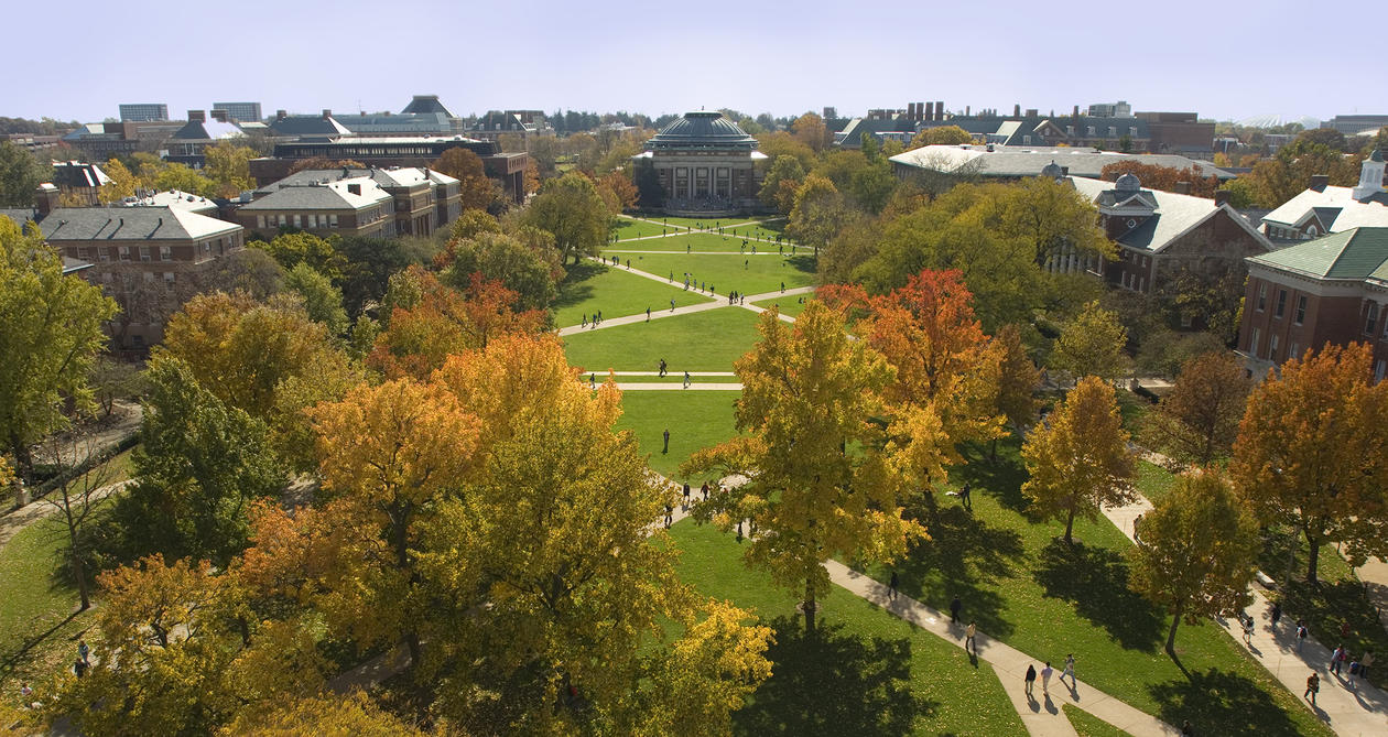 Grønt og frodig campus