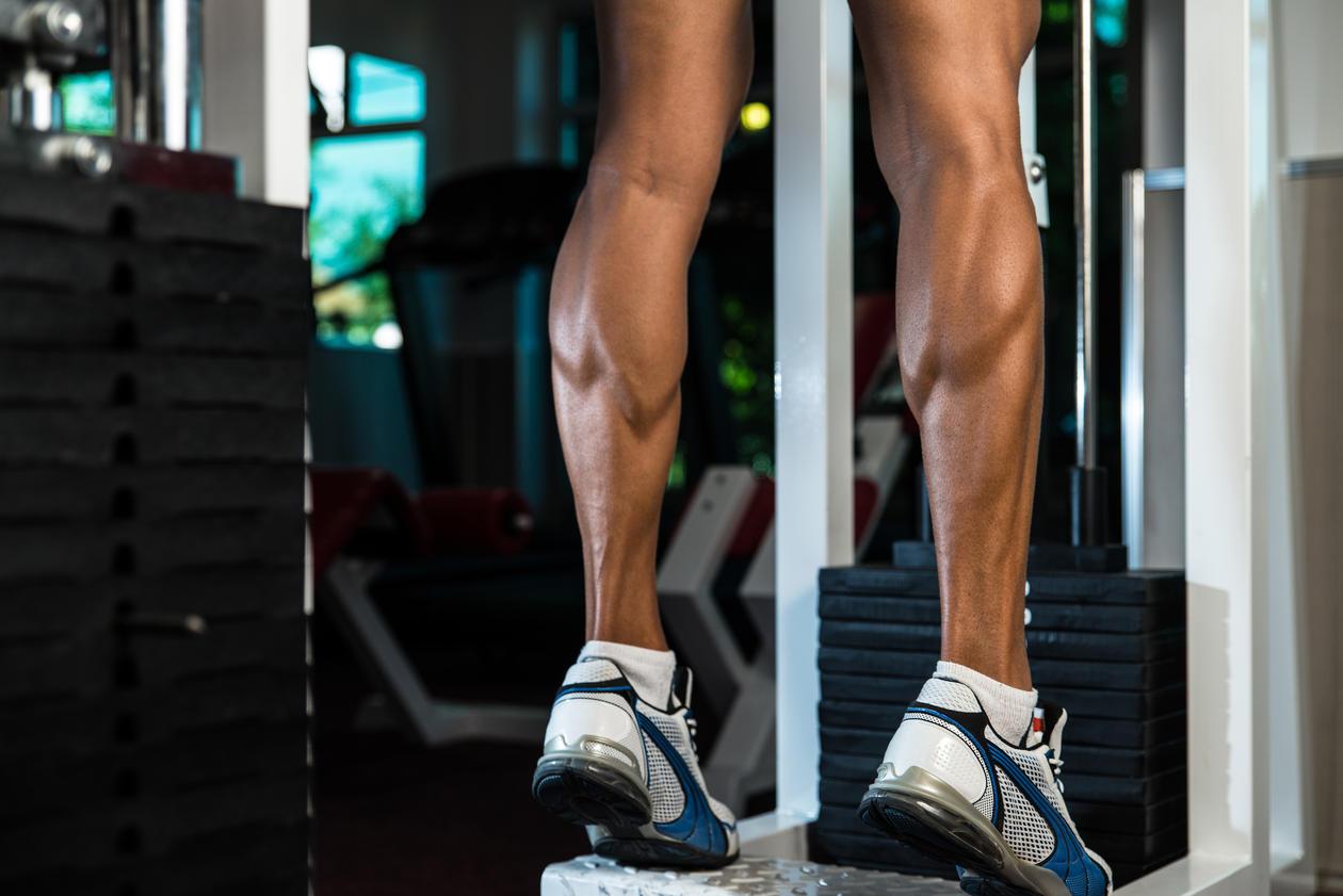 Lår muskulatur