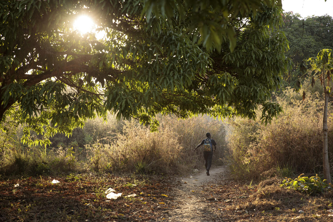 A child walking on a path through a field as the morning sun shines through the trees