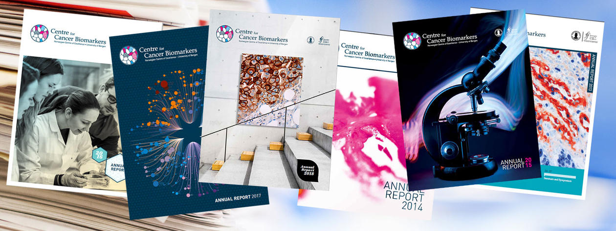 Front pages of all CCBIO annual reports.