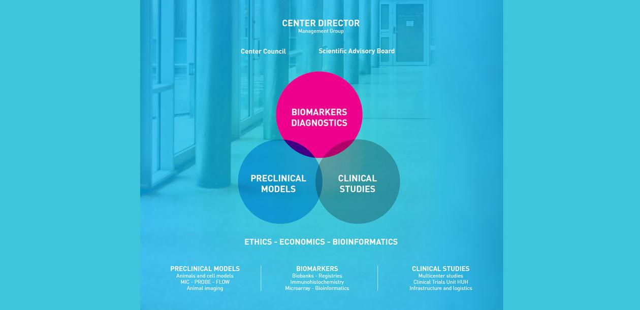 CCBIO organizational chart