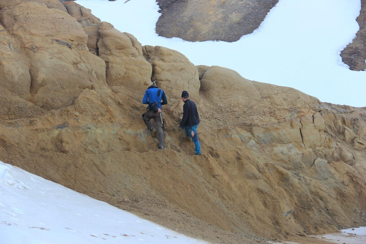 Sampling in a turbidite sandstone at Greenland
