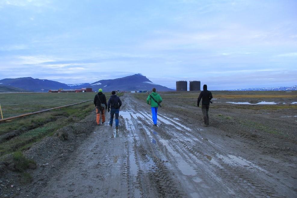 Greenland road