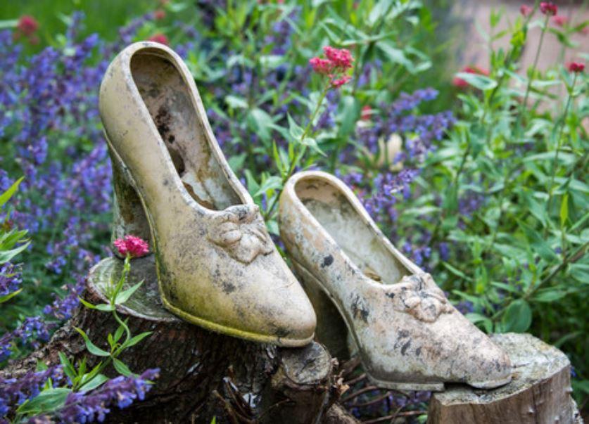 Shoes in garden