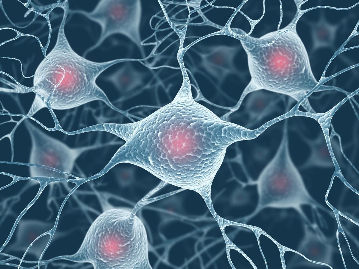 Illustrasjonsfoto av nerveceller