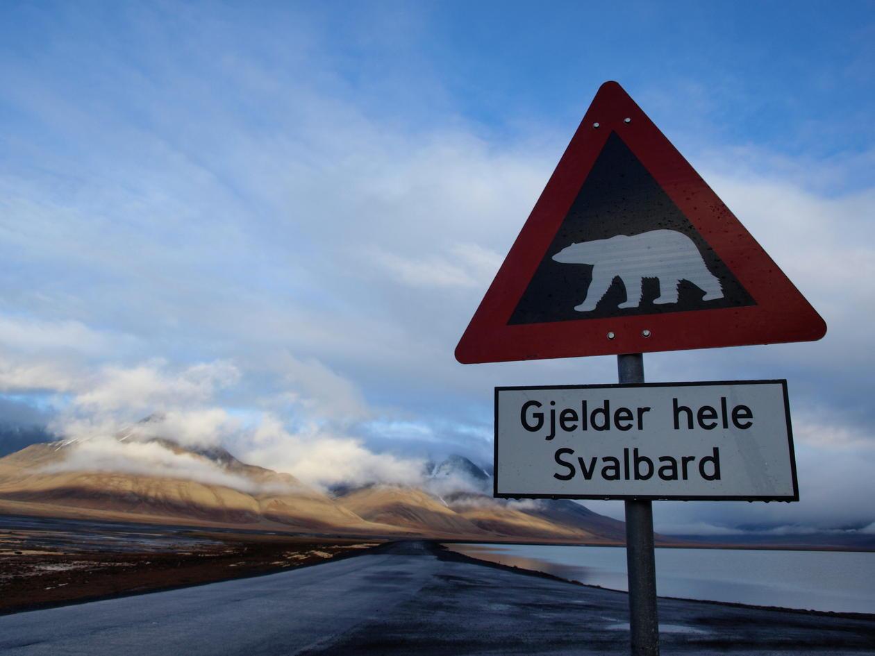 Polarbear sign in Svalbard