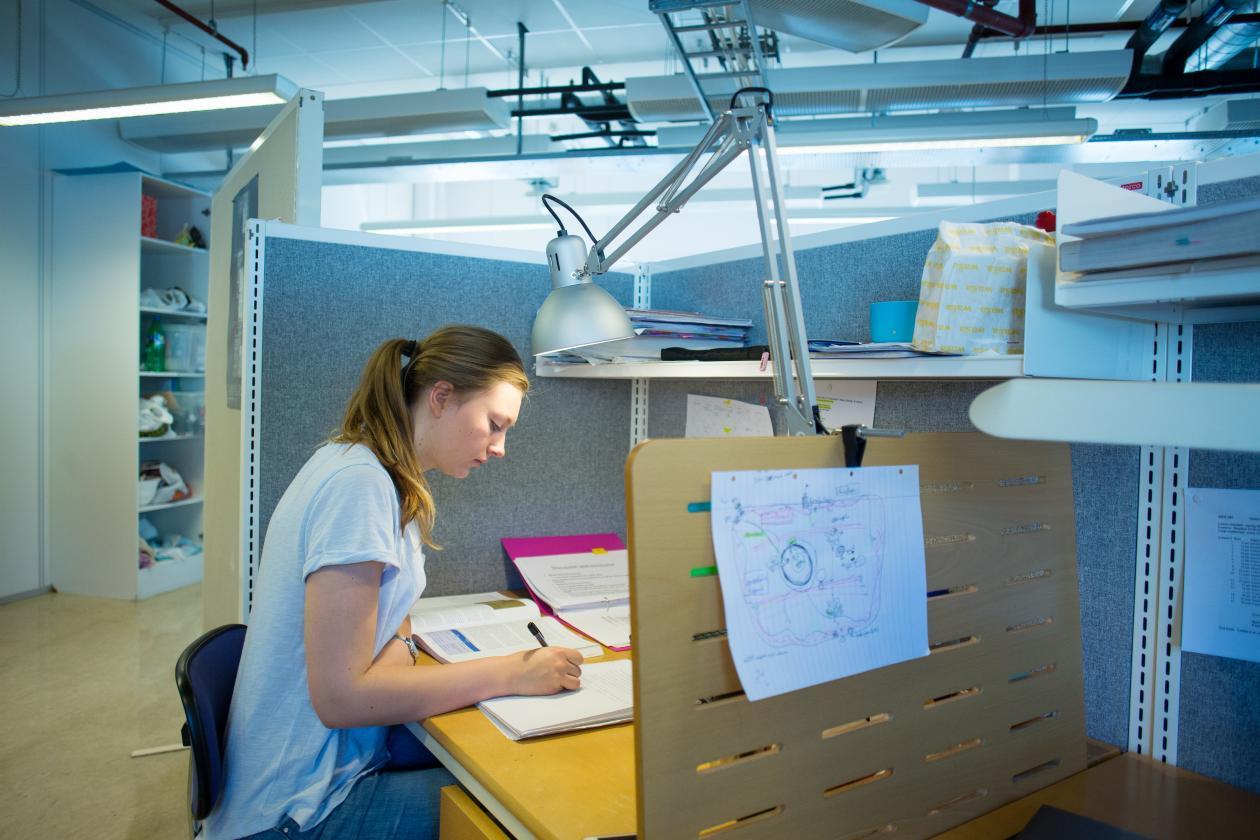 En student leser i ei bok på lesesalen