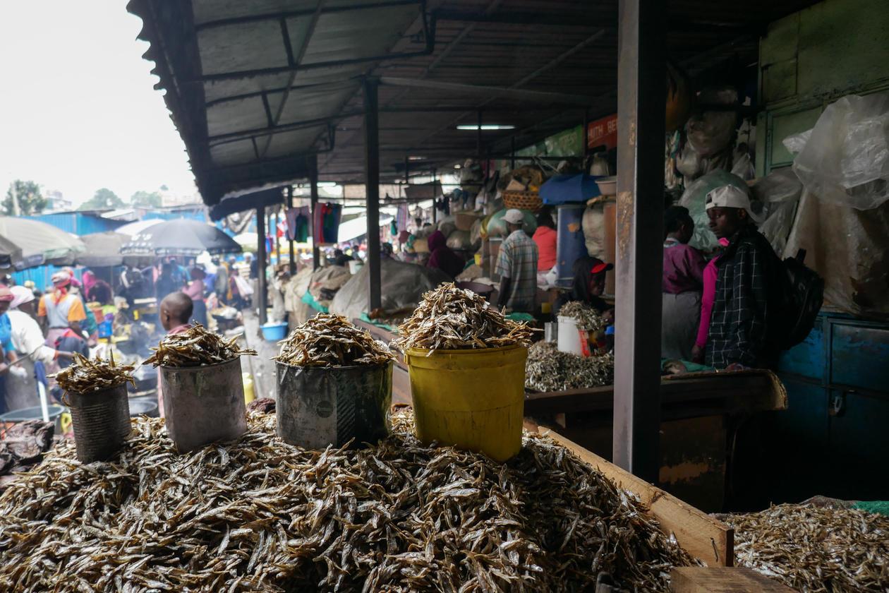 A fish market in Kenya.