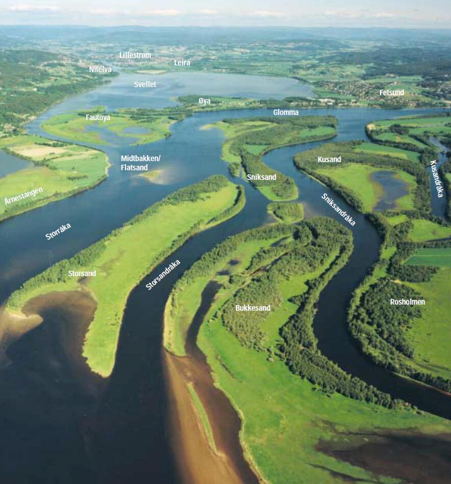 Deltalandskap Øyeren