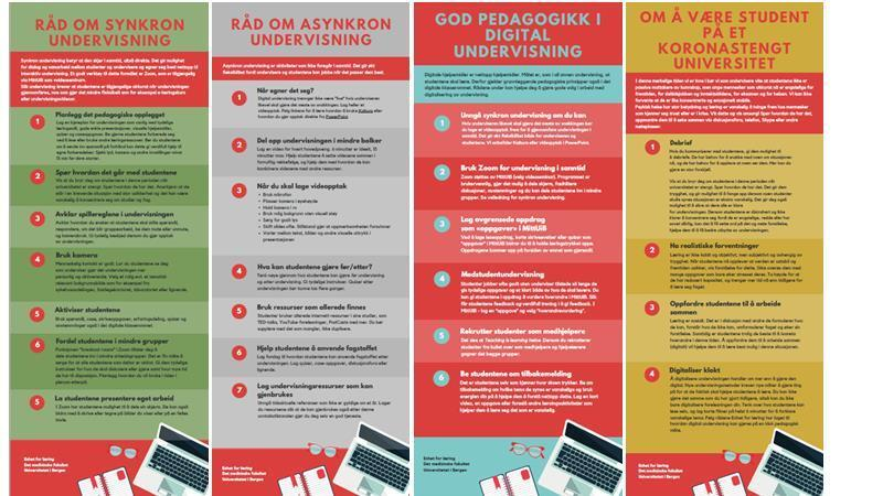Bilde av 4 plakater laget av Enhet for Læring