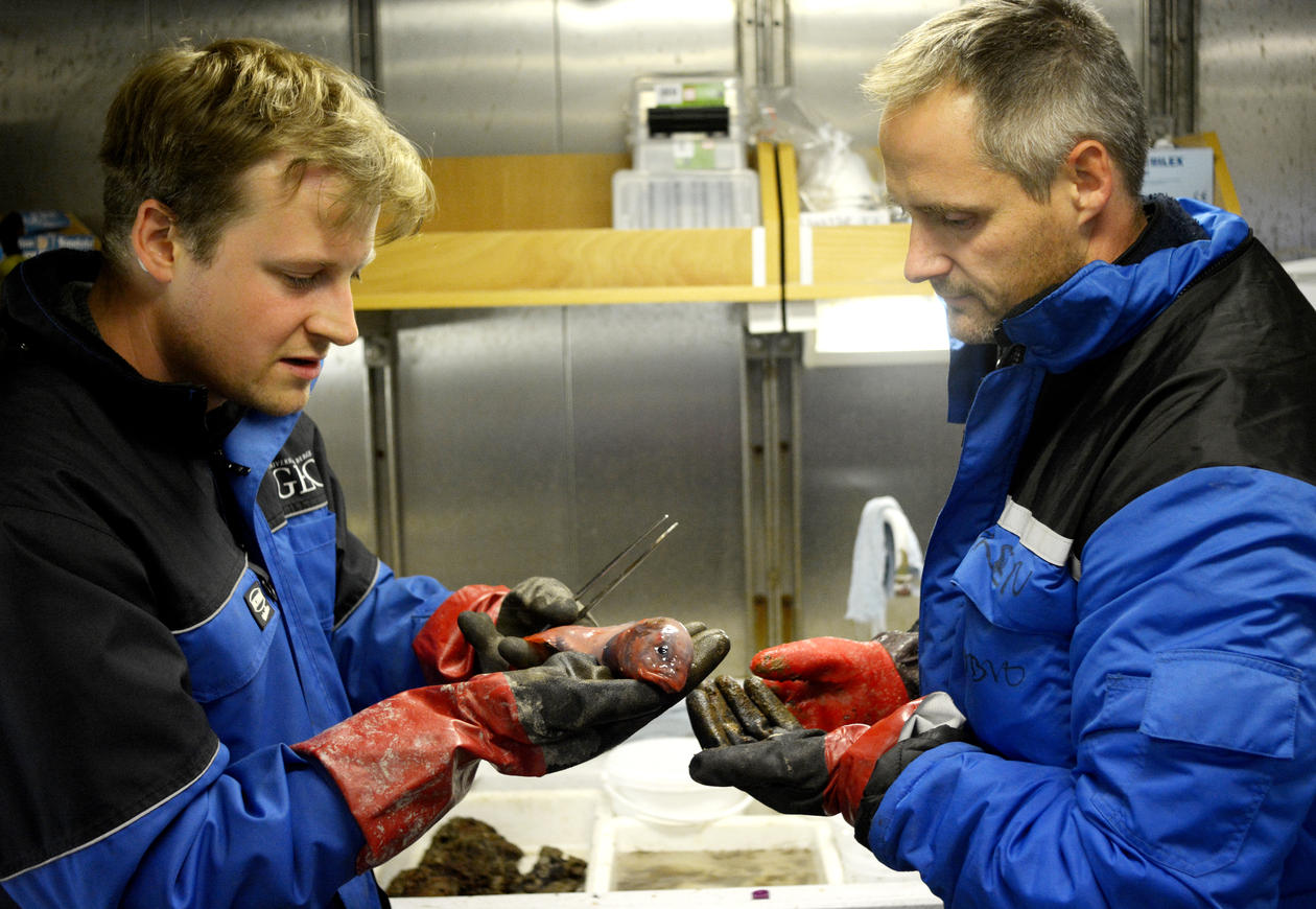 Researchers from the Centre for Geobiology at the University of Bergen during an expedition in the Arctic.