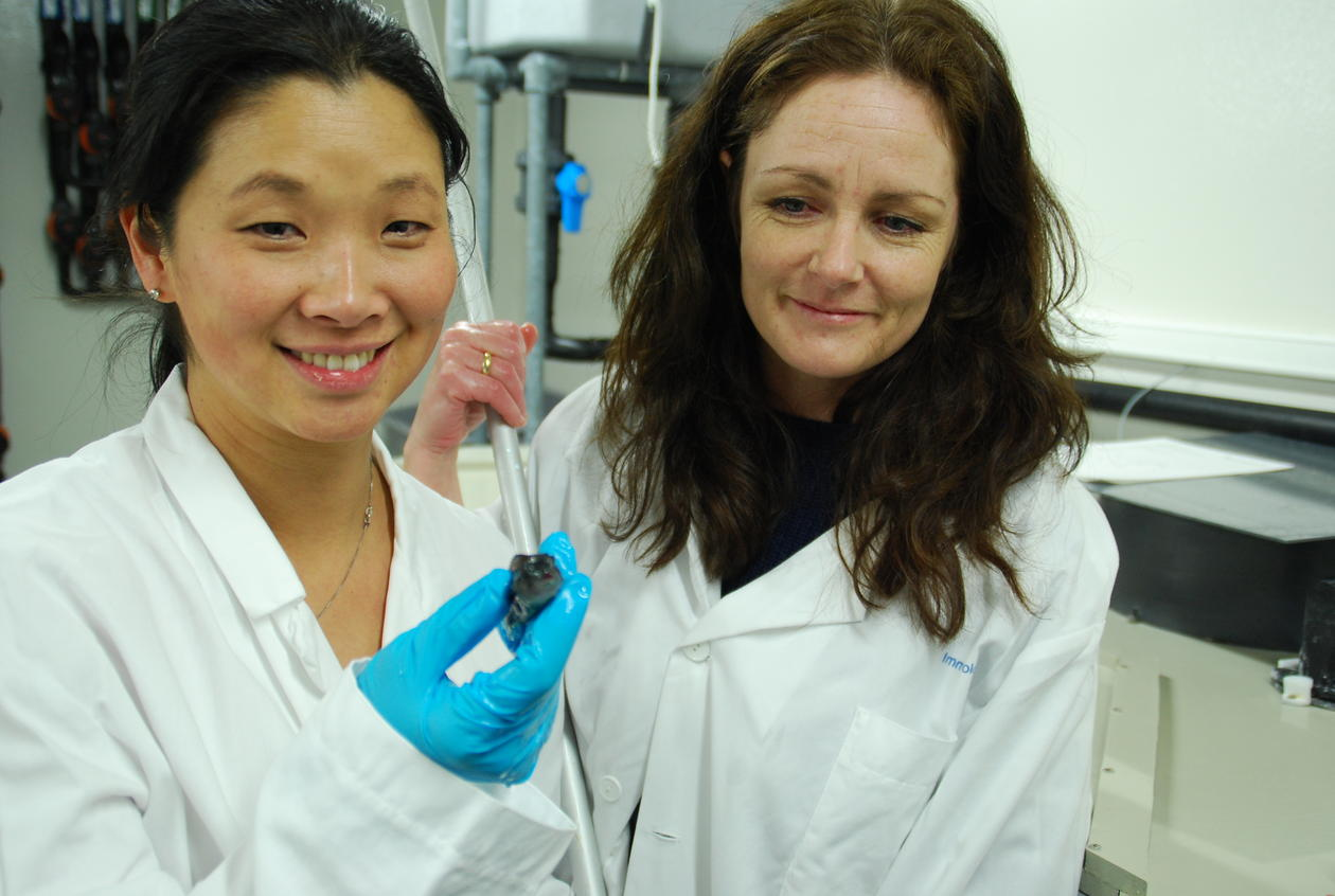 Forskerne Gyri Teien Haugland og Anita Rønneseth med en liten rognkjeks