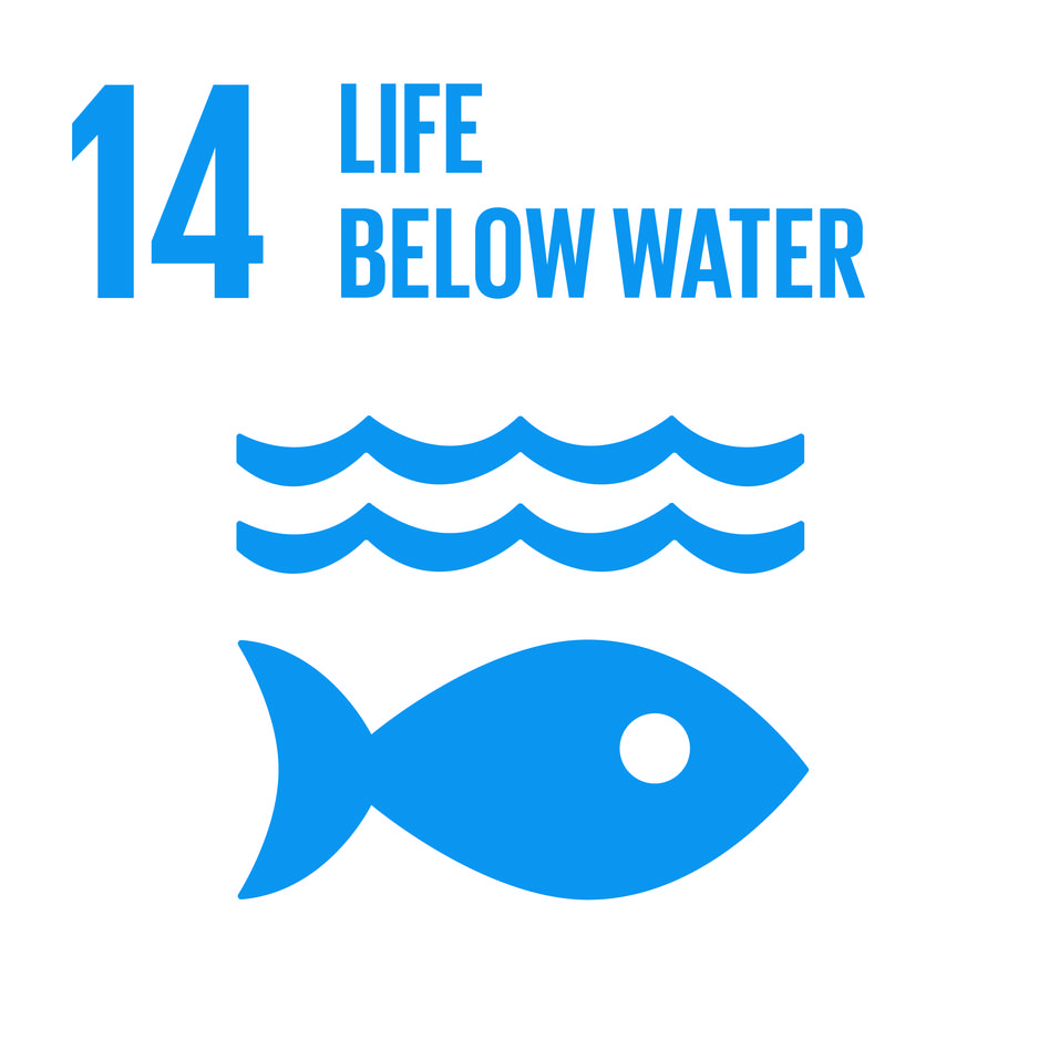 Inverted logo for Sustainable Development Goal (SDG) 14, Life Below Water.