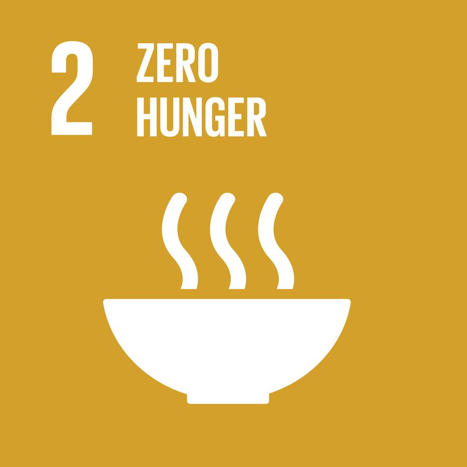 Logo for Sustainable Development Goal 2: Zero Hunger