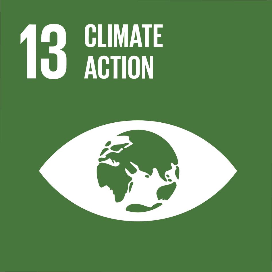 Logo for Sustainable Development Goal 13 (SDG13) – Climate action