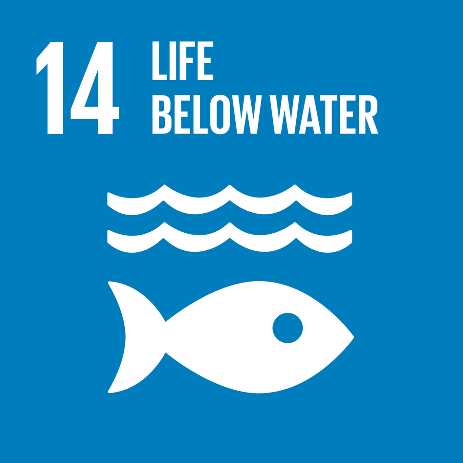 The logo for Sustainable Development Goal (SDG) 14, Life below water