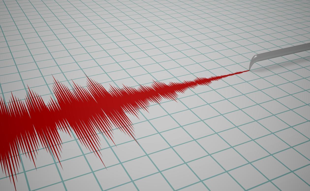 Earthquake term paper