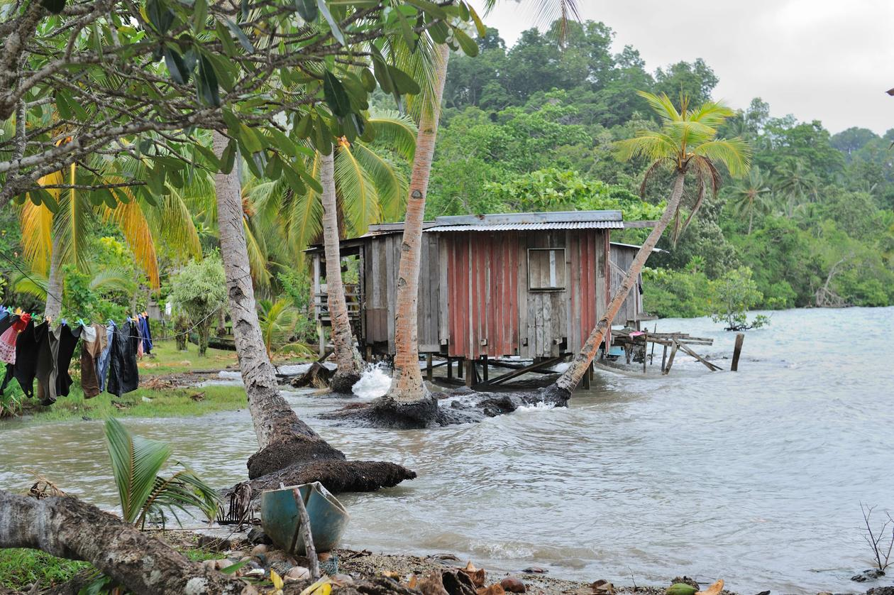Photo by social anthropologist Edvard Hviding taken during fieldwork in the Marovo lagoon of Solomon Islands in 2010 showing a fast eroding village shore.