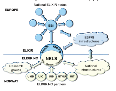 elixir project in norway. Diagram that shows the structure