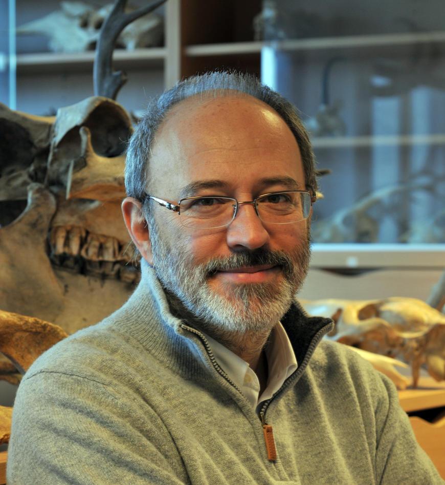 Professor Francesco d'Errico, Department of Archaeology, History, Cultural Studies and Religion, University of Bergen (UiB).