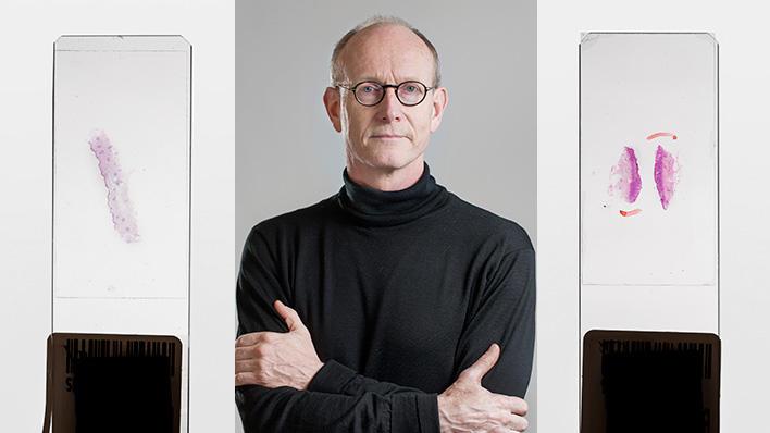 Portrett Karl-Henning Kalland, professor, Klinisk institutt 2 – infeksjonsforskning, UiB.