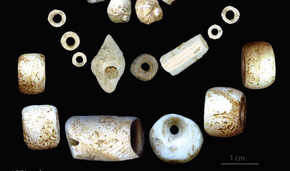 Ornaments from the Early Neolithic Period, belonging to Le Tai, Toulouse University and Essenbach-Ammerbreite, Archäologische Staatssammlung München.