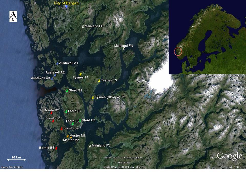 Bufo bufo study populations in Norway