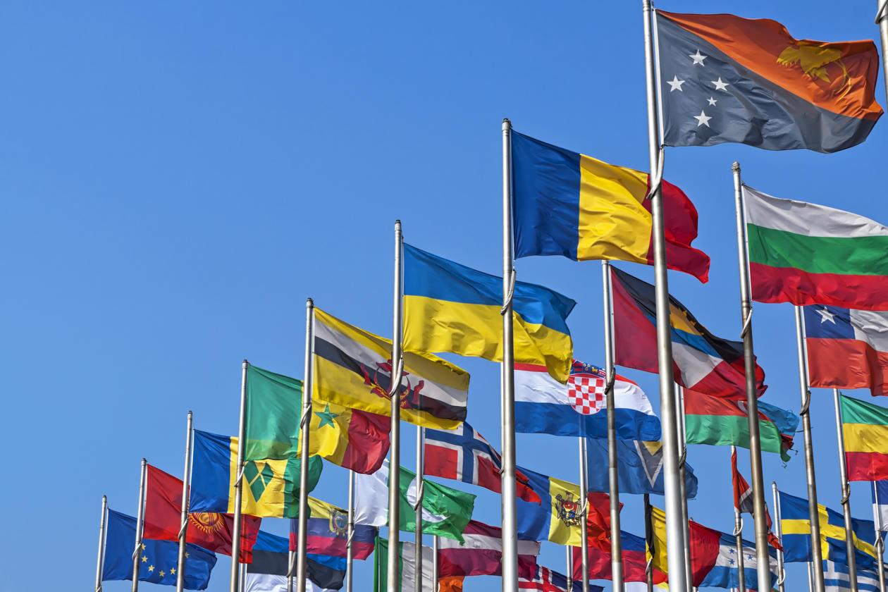 Et bilde av flagg fra en rekke ulike land. Bildet skal symbolisere temaet internasjonale institusjoner og organisasjoner.