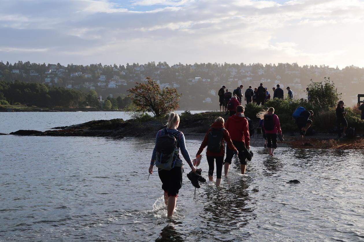 Geofag: Studenter på feltkurs i Oslo