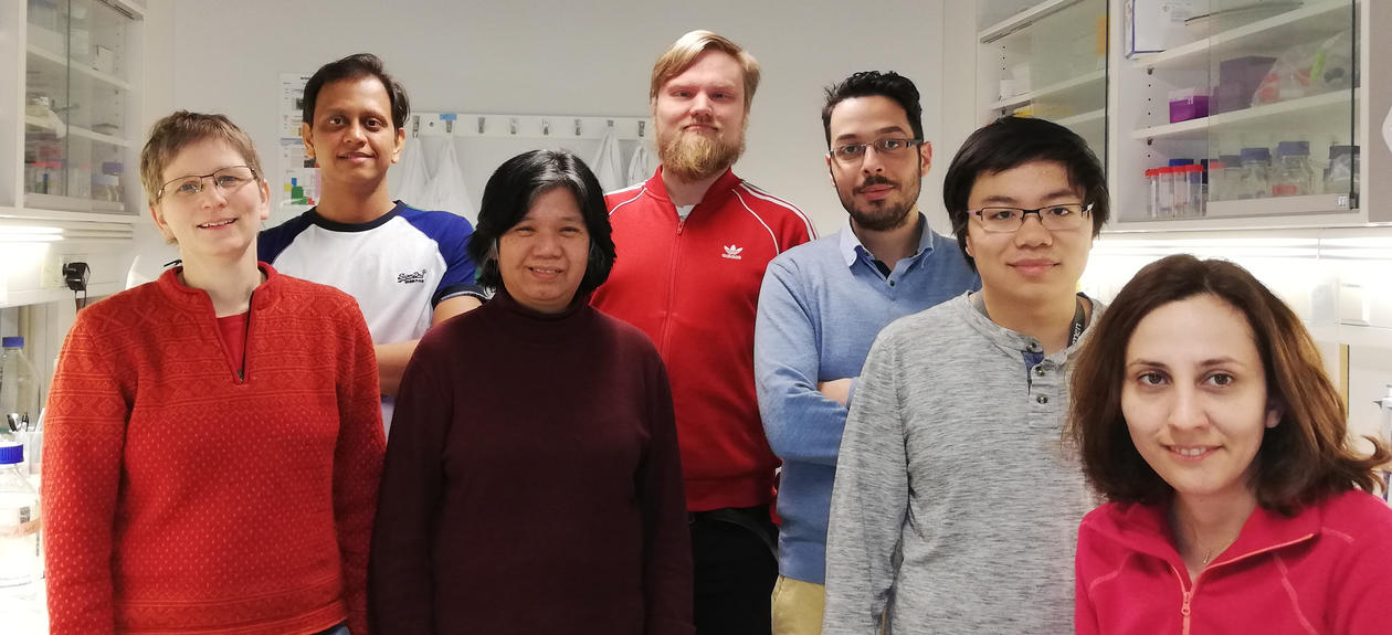 Brenk lab 2019