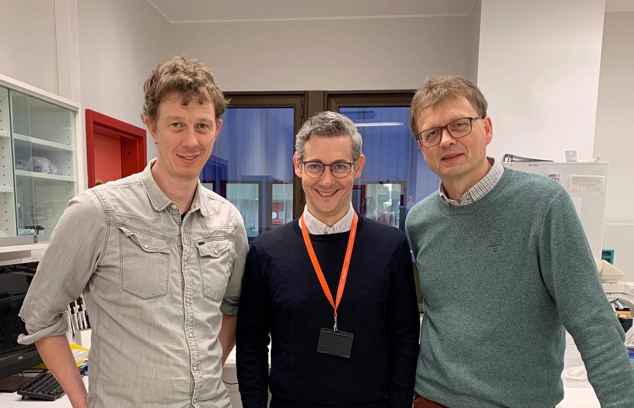 Nils Halberg (f.v.), Emmet Mc Cormack og Anders Molven bidrar i den nye forskningssatsingen på bukspyttkjertelkreft. (Foto: Karen Toska)