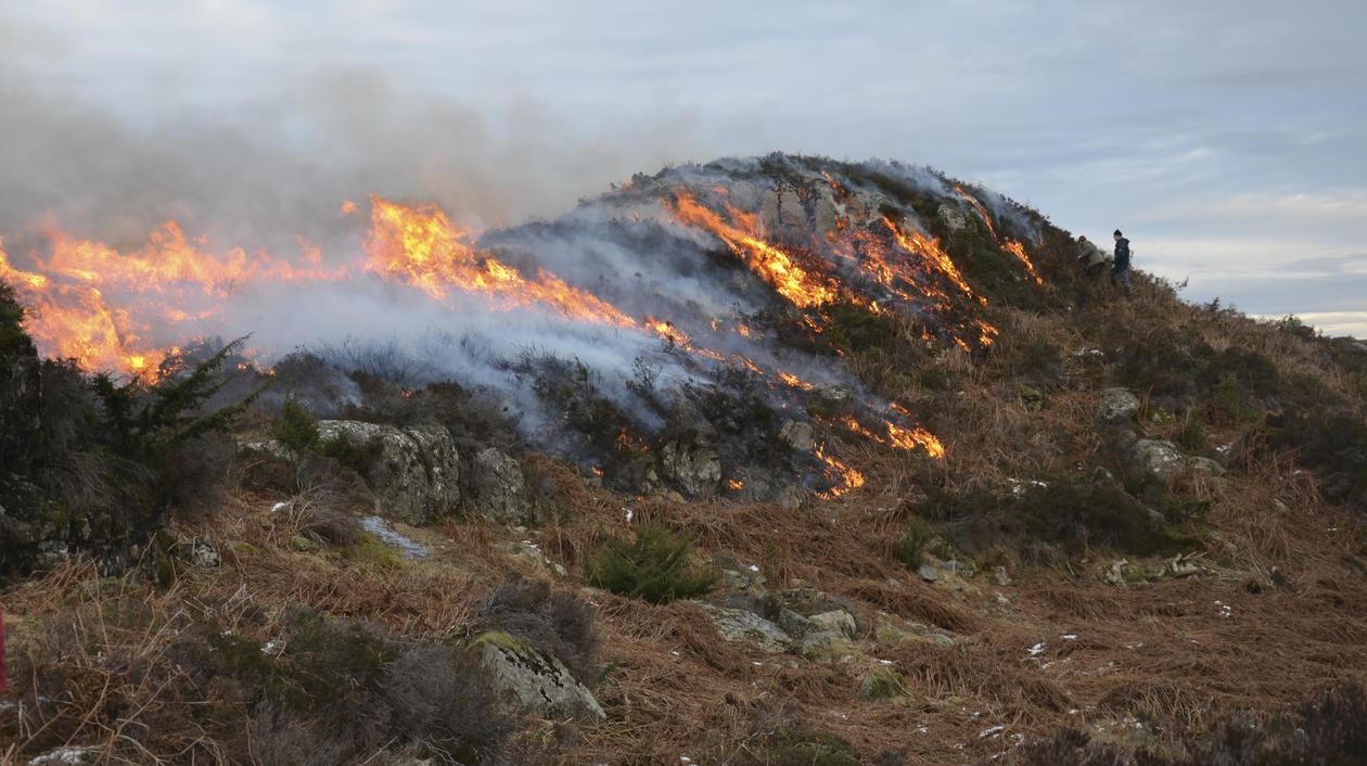 A small rocky knoll in burning heathland