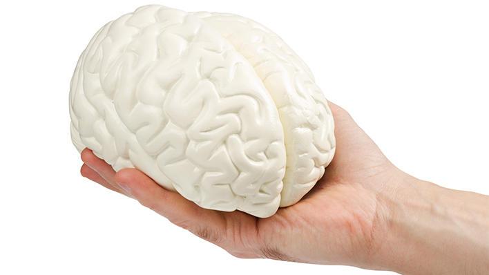 Illustrasjonsbilde: Hånd holder hjerne