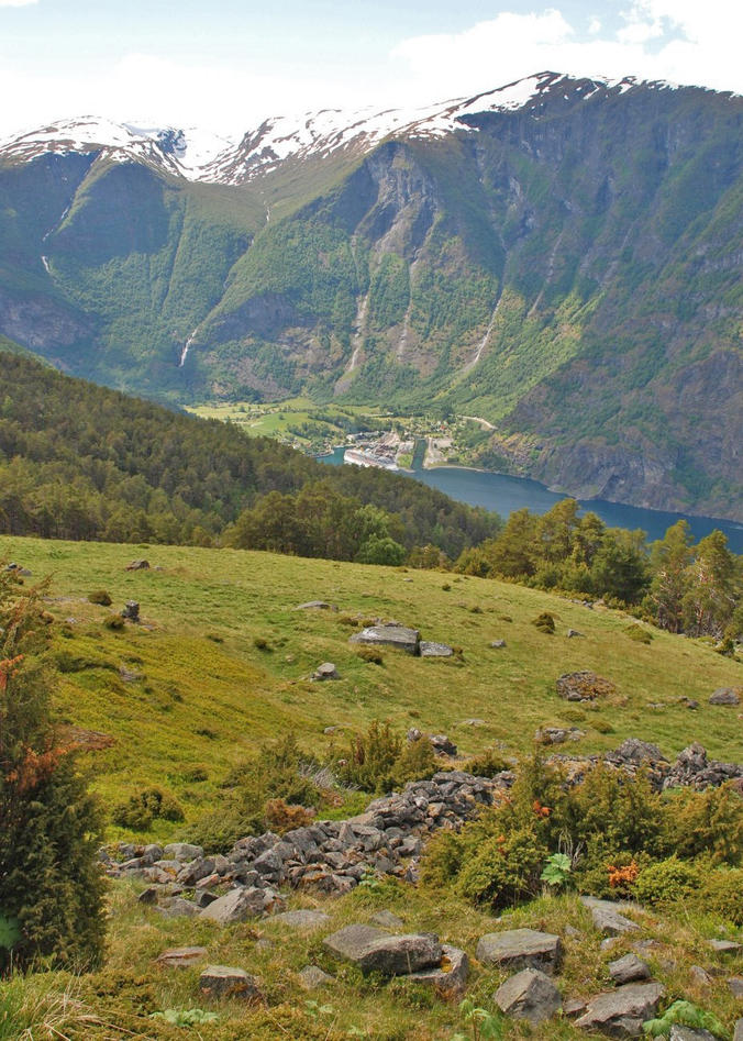 View over to the steep mountains of Høgsete that sweep down to the fjord at Flåm from one of the experimental sites