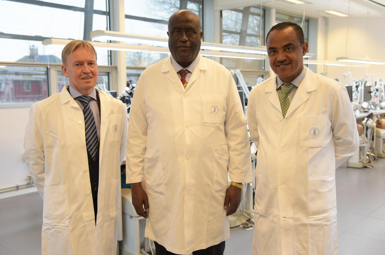 President at Addis Ababa University College (AAU), Admasu Tsegaye and Zenebe Beyene at AAU visited the Department of clinical dentistry (DCD) to strengthen the collaboration between AAU and UiB. At the far left, professor Asgeir Bårdsen at DCD.