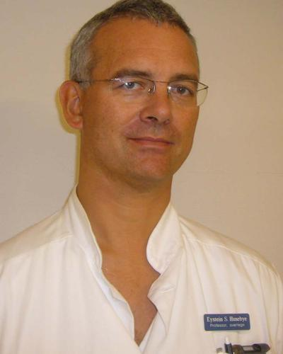 Professor Eystein Sverre Husebye, Guest professor, Department of Medicine (Solna), Karolinska institutet