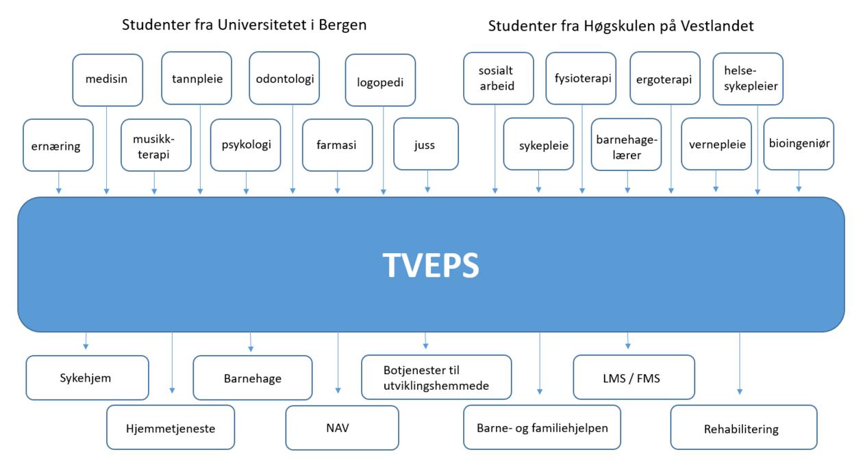 Hvem deltar i TVEPS 2019, illustrasjon oppdatert august 2019