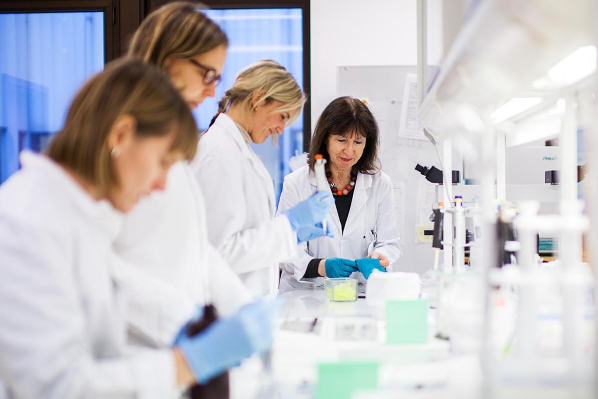 Bilde som viser forskere ved Centre for Cancer Biomarkers (CCBIO)