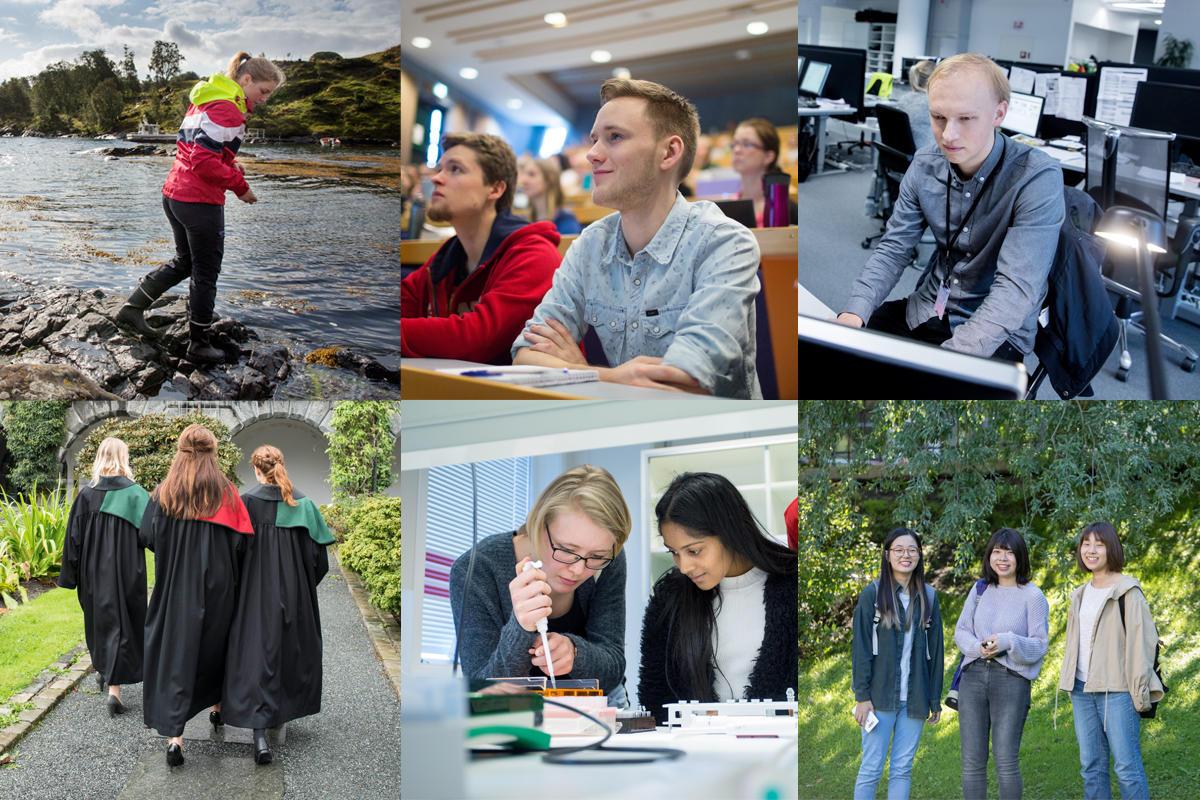 Collage som viser utdanning ved UiB
