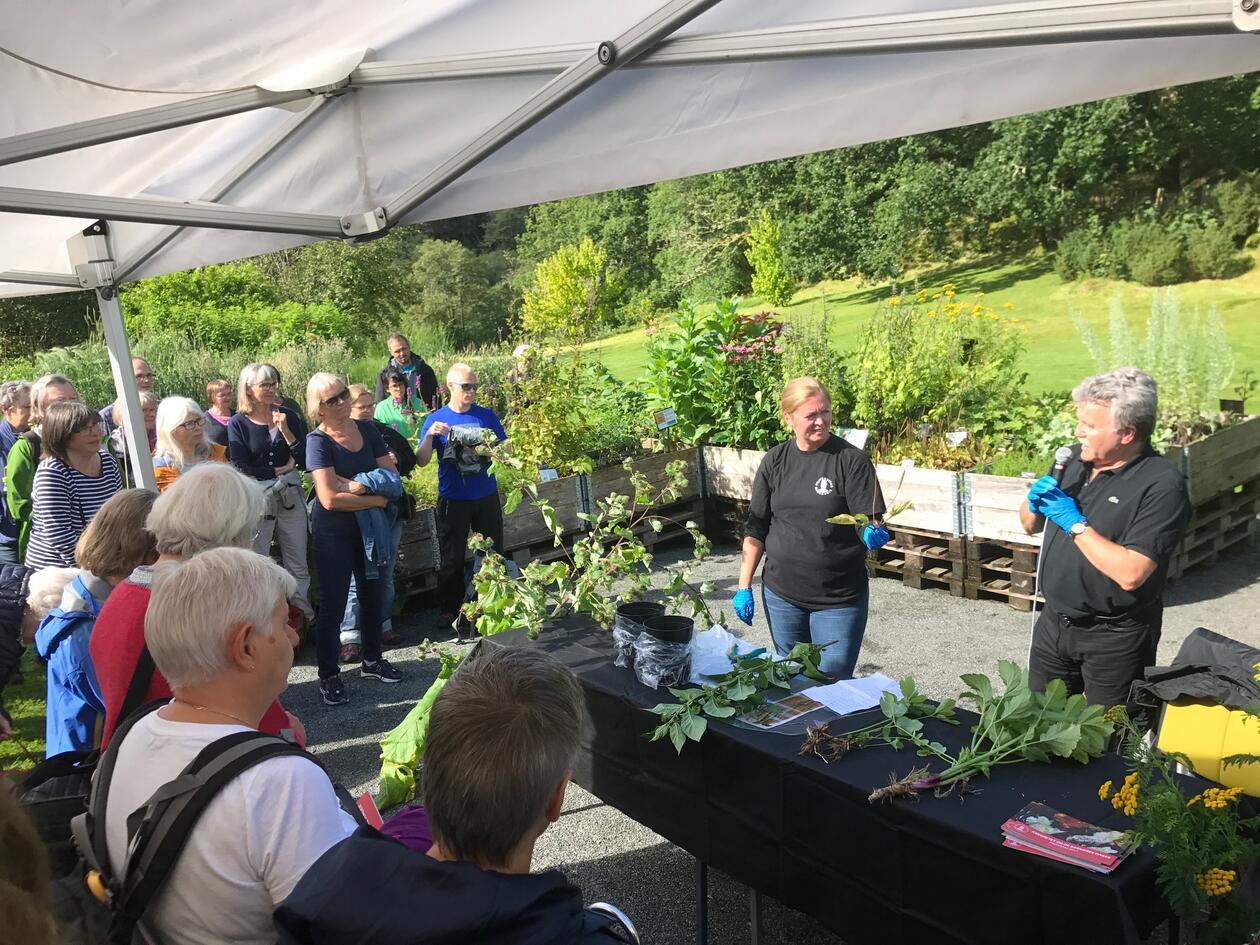 Foredrag botanisk hage