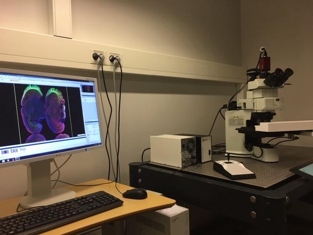 Olympus VS120 S6 Slide scanner | Molecular Imaging Center