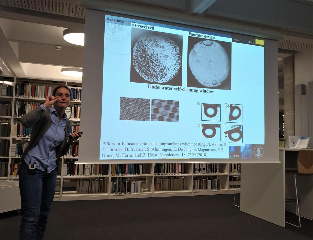 Bodil Holst Nanptechnology