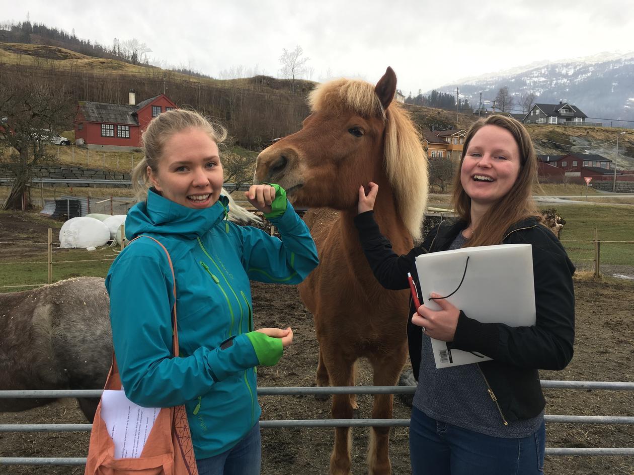 To studenter og en hest