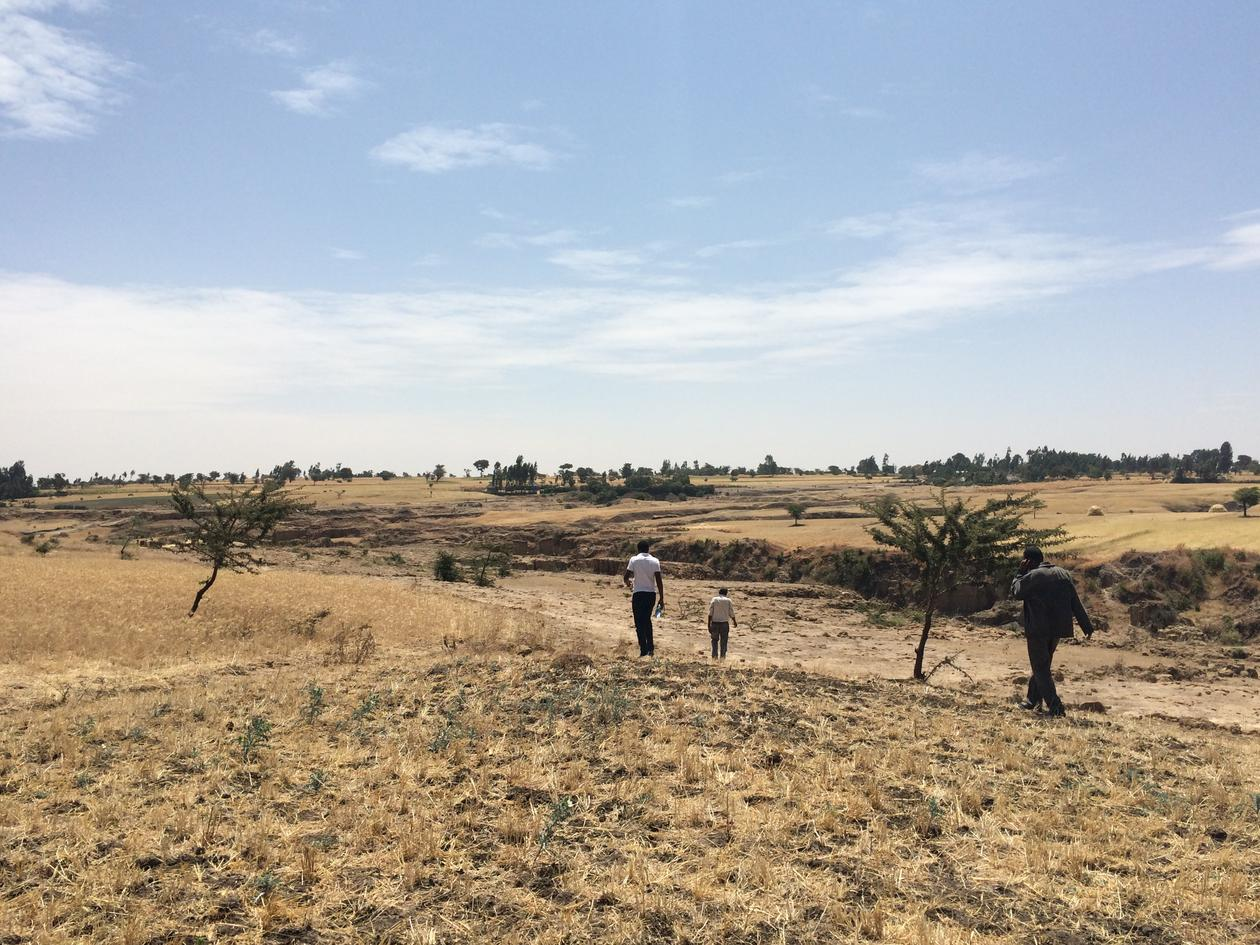 Gates project in Ethiopia