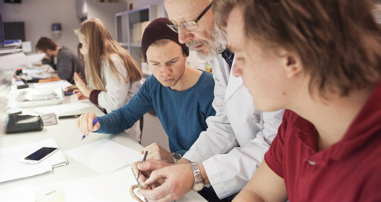 Professor og to studenter i laboratirium