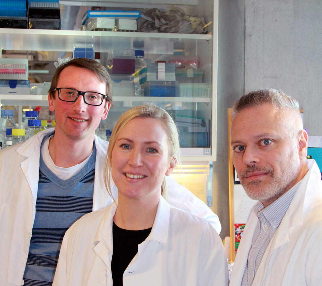 de tre forskerne på laboratoriet